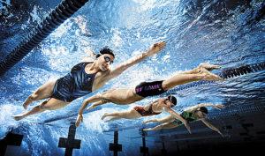 cursuri inot adulti ~ bluemarin sport club